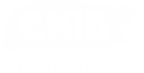 CNIB Foundation Logo